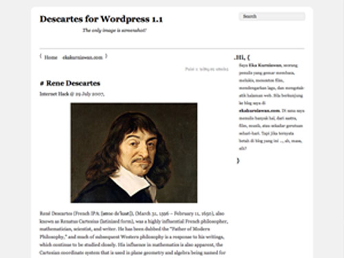 wordpress_kisisel_blog_temasi_descartes